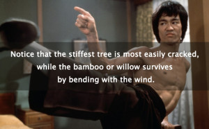 Bruce-Lee-Quote Notice the Stiffest Tree is most easily cracked